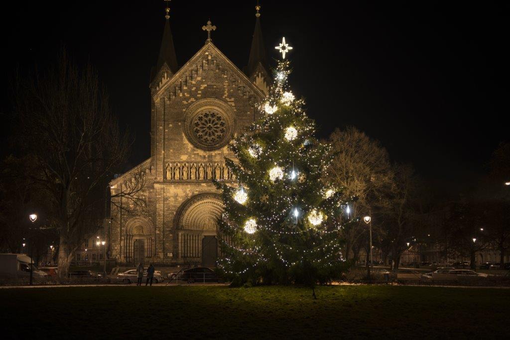 Velký vánoční strom
