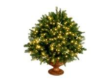 vánoční osvětlení na baterie - osvětlení pergoly